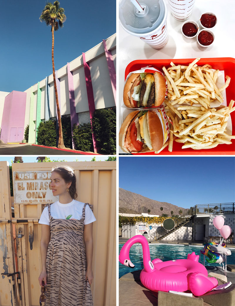 Diary from Palm Springs